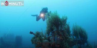Concluse le operazioni di monitoraggio del relitto della nave da sbarco HMS LST-429 nel Canale di Sicilia, la cui presenza era già nota alla Soprintendenza del Mare, a seguito di segnalazione di Pietro Faggioli e del compianto Andrea Ghisotti, fin dal 2007. Il team di studi composto dal centro subacqueo Blue Dolphins di Lampedusa, guidato da Alessandro Turri, e del centro subacqueo Ecosfera di Messina, guidato da Domenico Majolino.