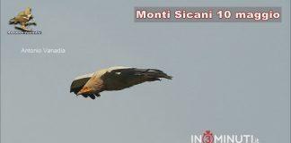 Monti Sicani, Antonio Vanadia