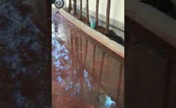 Perdita d'acqua segnalata da 15 giorni INUTILMENTE 📹VIDEO RICEVUTO